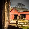Howell Farm-4849