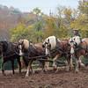 Howell Farm-4982