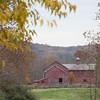 Howell Farm-4793