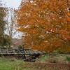 Howell Farm-4986