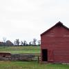 Howell Farm-4842