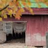 Howell Farm-4830
