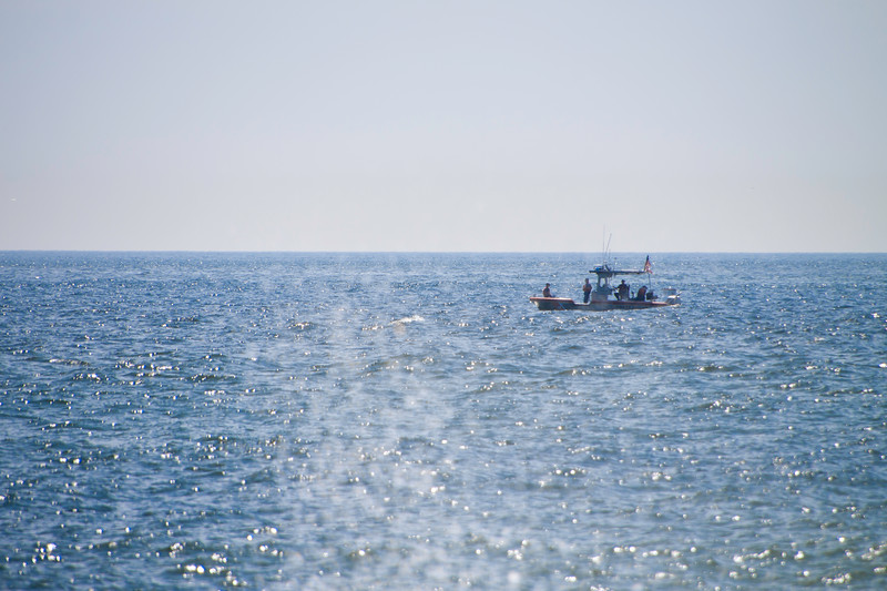 2012  Is Beach St Park-9479