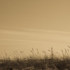 island beach-1223