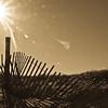 island beach-1064-2