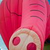 Balloon-8140