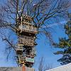 6 Story Treehouse