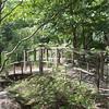 Sayen Garden-