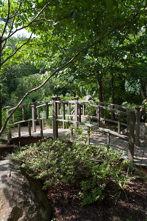 Sayen Garden-1309