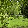 Sayen Garden-1402
