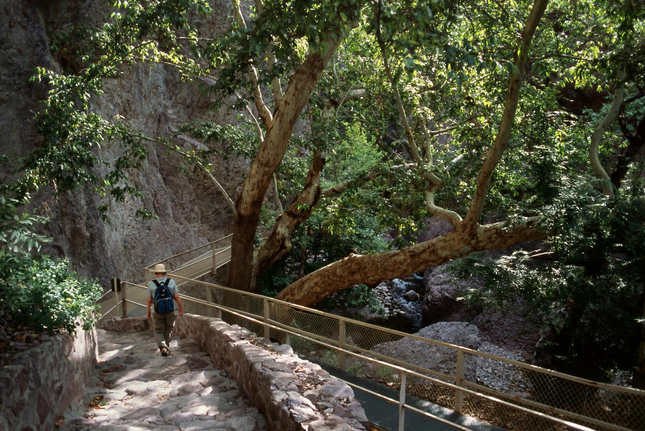 Rita starts down the Catwalk trail.