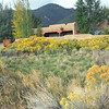 A house we rented for a few days near Taos. It had very large rooms. The yellow-blooming shrubs are Chamisa (Chrysothamnus nauseosus).