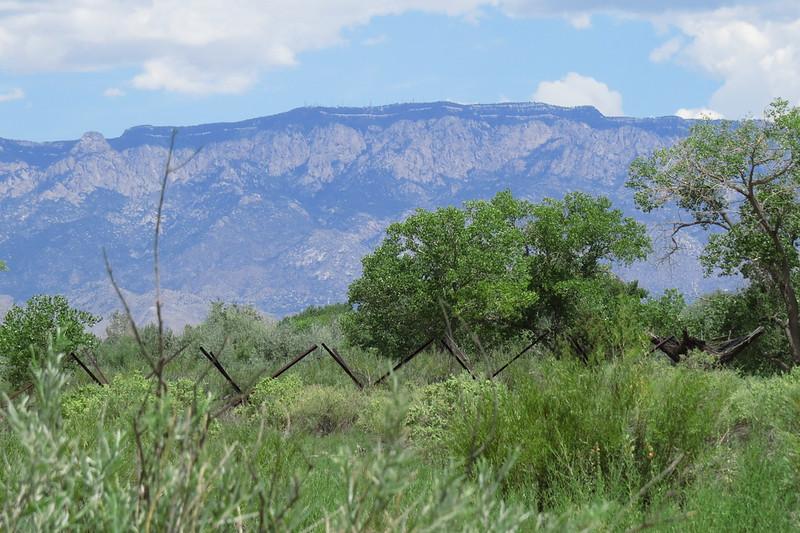 Riparian nature preserve near Albuquerque