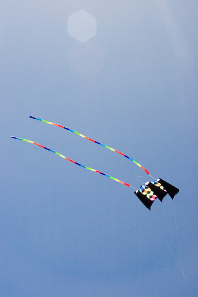 Another kite.