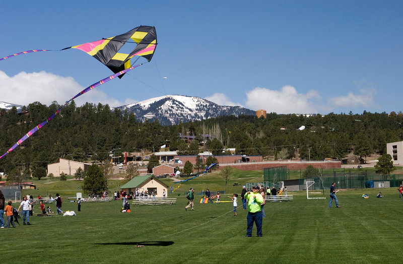 Another big kite.