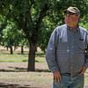 Fort Fillmore Salopek Farms - Mesilla Park
