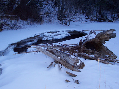 Snow-covered Rio Pueblo near Tres Ritos.