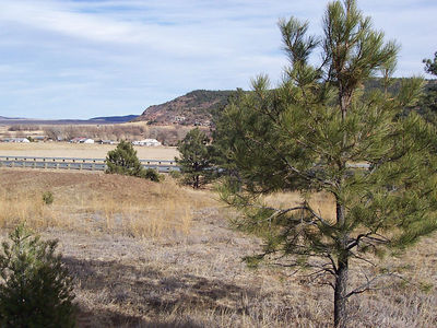 A view from a five-acre property also in Buena Vista but on the west side of the highway.