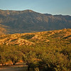 View of the Santa Catalina Mountains from Miraval