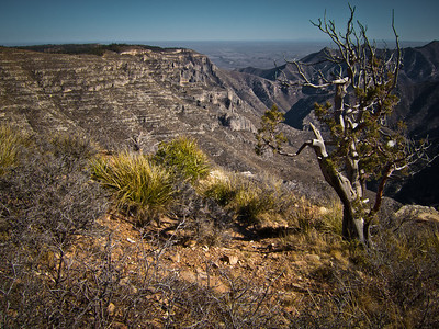 """The Balcony"" along Camp Wilderness Ridge in the Guadalupe Mountains-Lincoln National Forest.  Overlooking McKittric Canyon in Guadalupe Mountains National Park."