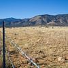Landscape-NM-1613