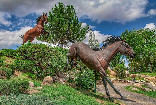 Horse scupltures
