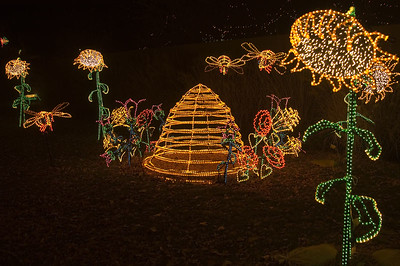 River of Light, Rio Grande Botanic Garden visitors can enjoy the magic of hundreds of thousands of twinkling lights and dazzling holiday displays at New Mexico's largest walk-through light show.