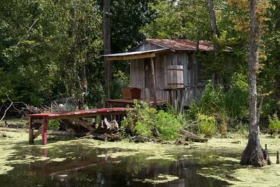 Swamp and Bayou Tour