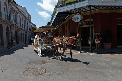 Horse-Drawn Tour