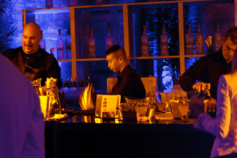 Grey Goose VIP Party