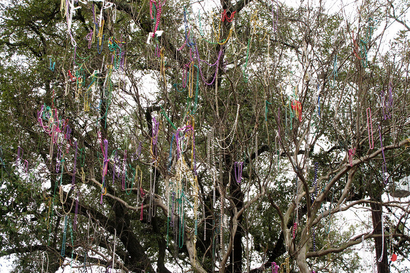 Bedecked tree