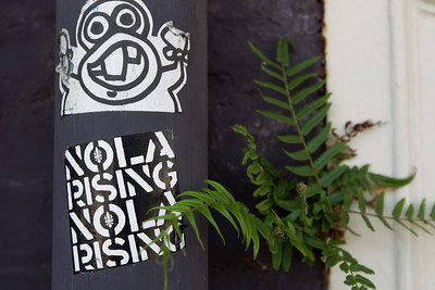 NOLA rising