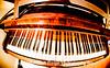Fisheye Piano at Oak Alley Plantation