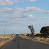 Day 26 - Between Narrandera and Lockhart