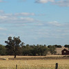 Day 26 - Between Narrandera and Lockhart
