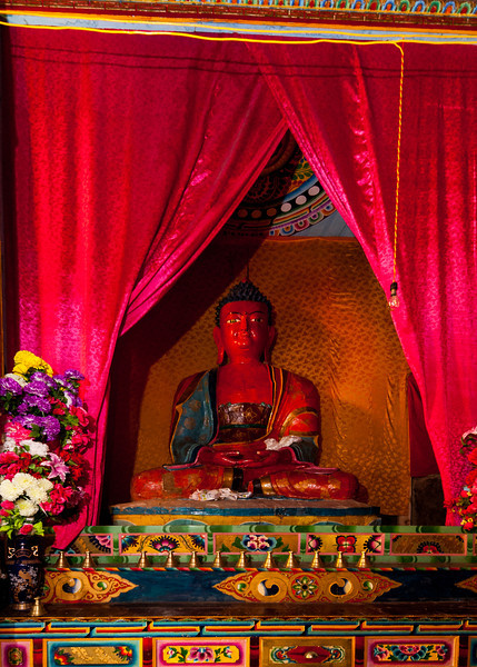 Amitabha, the Buddha of the Padma Family of the Western sector of the mandala, indicated by the red color and the meditation mudra.