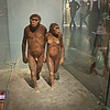 AMNH - hominid display.  These are reconstructions of what the hominids who made the tracks may have looked like - they walk so closely together because that is how the footprints run.