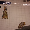 AMNH subway station