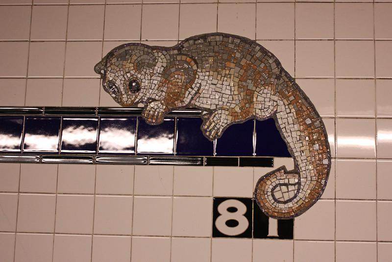AMNH subway station