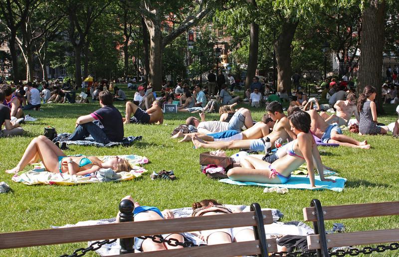 Washington Square sunbathers