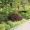 NY Botanic Garden