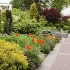 NY Botanic Garden, with gardener