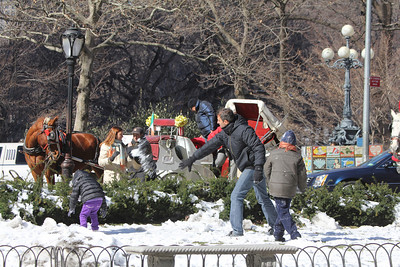 family throwing snowballs in Central Park