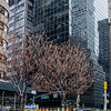 Park Avenue and 59th Street