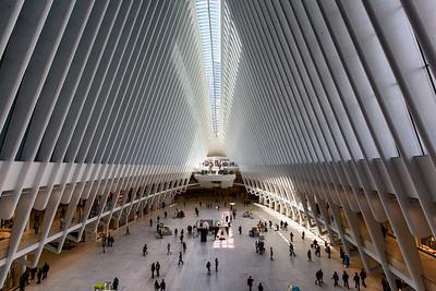 Calatrava's Occulus