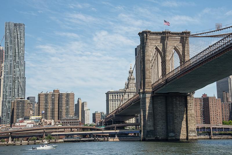 NYC-2559tnd