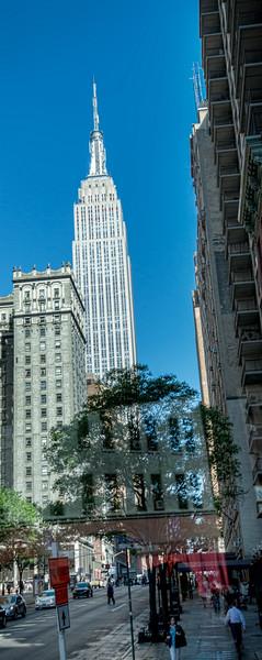 NYC-1956tna