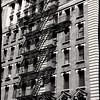 NYC-1664TNBW
