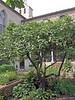 The Bonnefont Cloister garden.