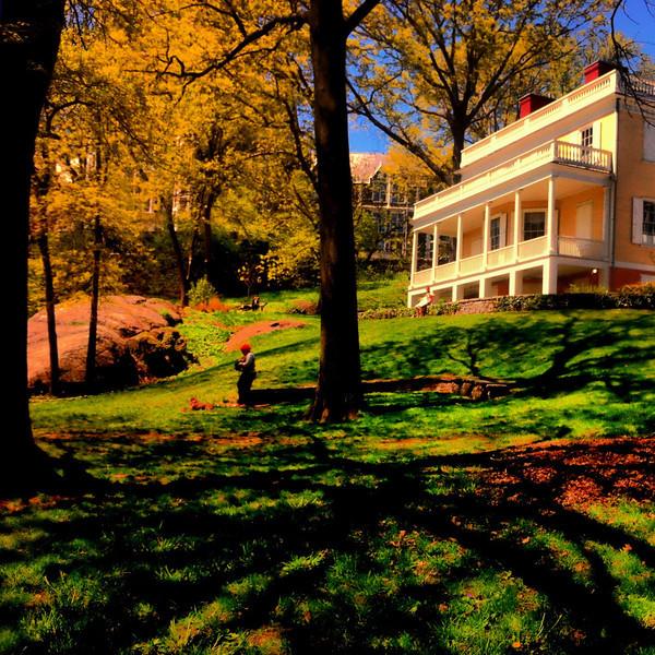 Hamilton Grange pastoral<br /> <br /> iPhoneography